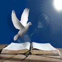 Biblia Abierta Espiritu Santo1 Palabra De Vida
